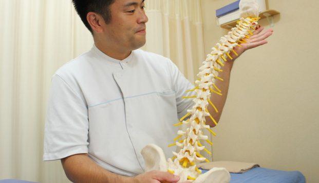 和泉鍼灸整骨院のメインビジュアル