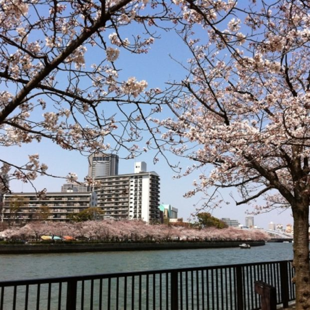 桜ノ宮アイキャッチ