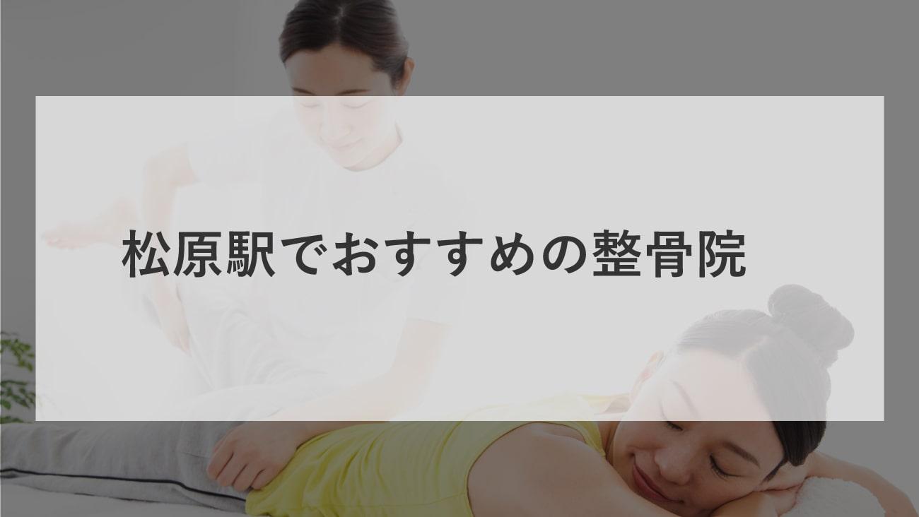 松原駅周辺でおすすめの整骨院2選!口コミで評判が良いお店のMV画像