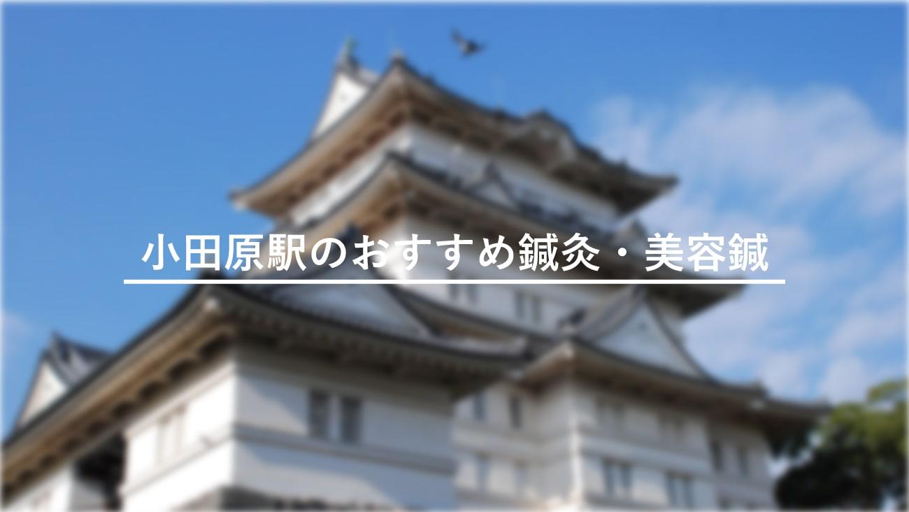 小田原駅周辺でおすすめ鍼灸・美容鍼4選!口コミで評判が良い!のMV画像