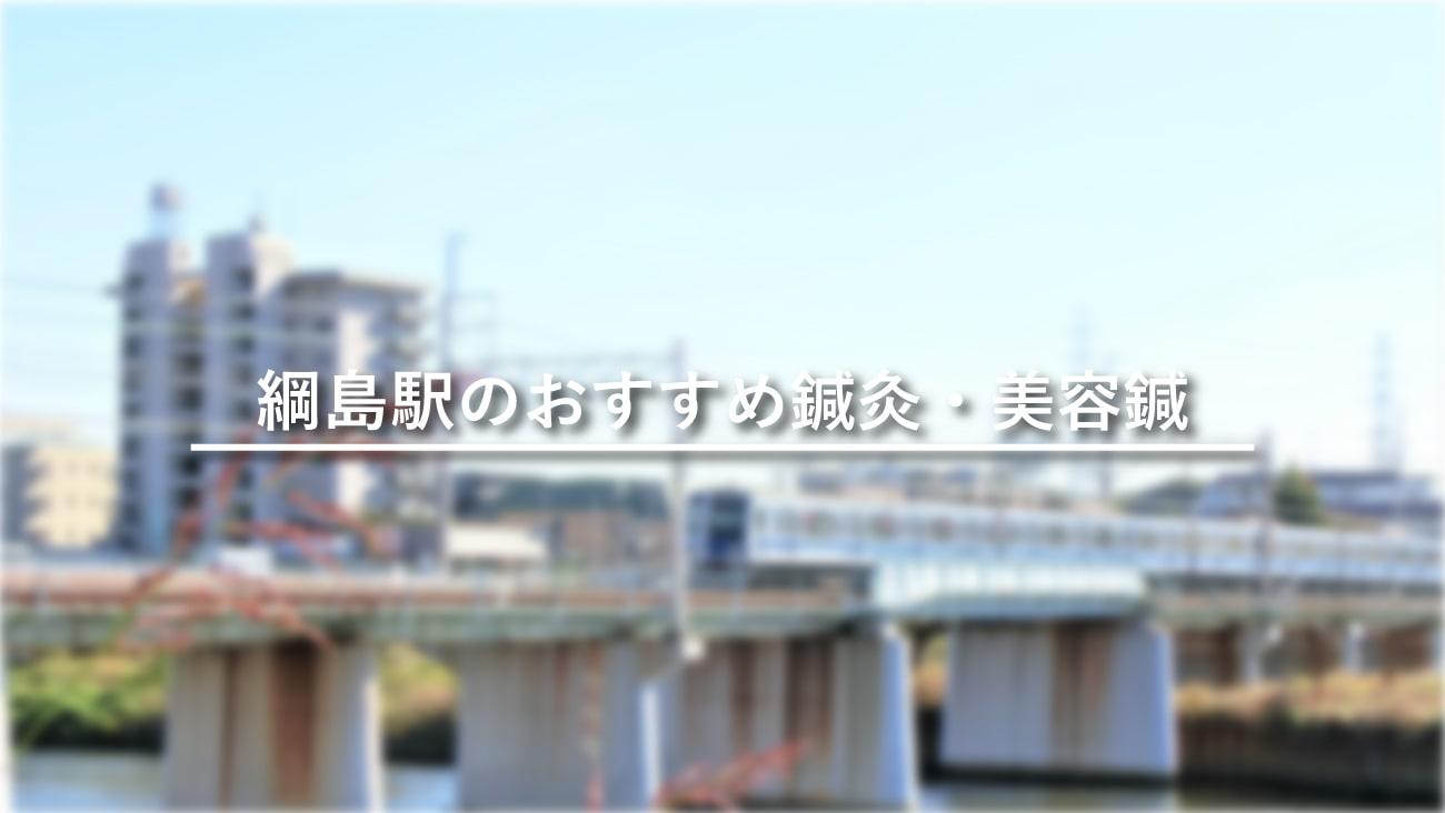 綱島駅周辺でおすすめ鍼灸・美容鍼5選!口コミで評判が良い!のMV画像