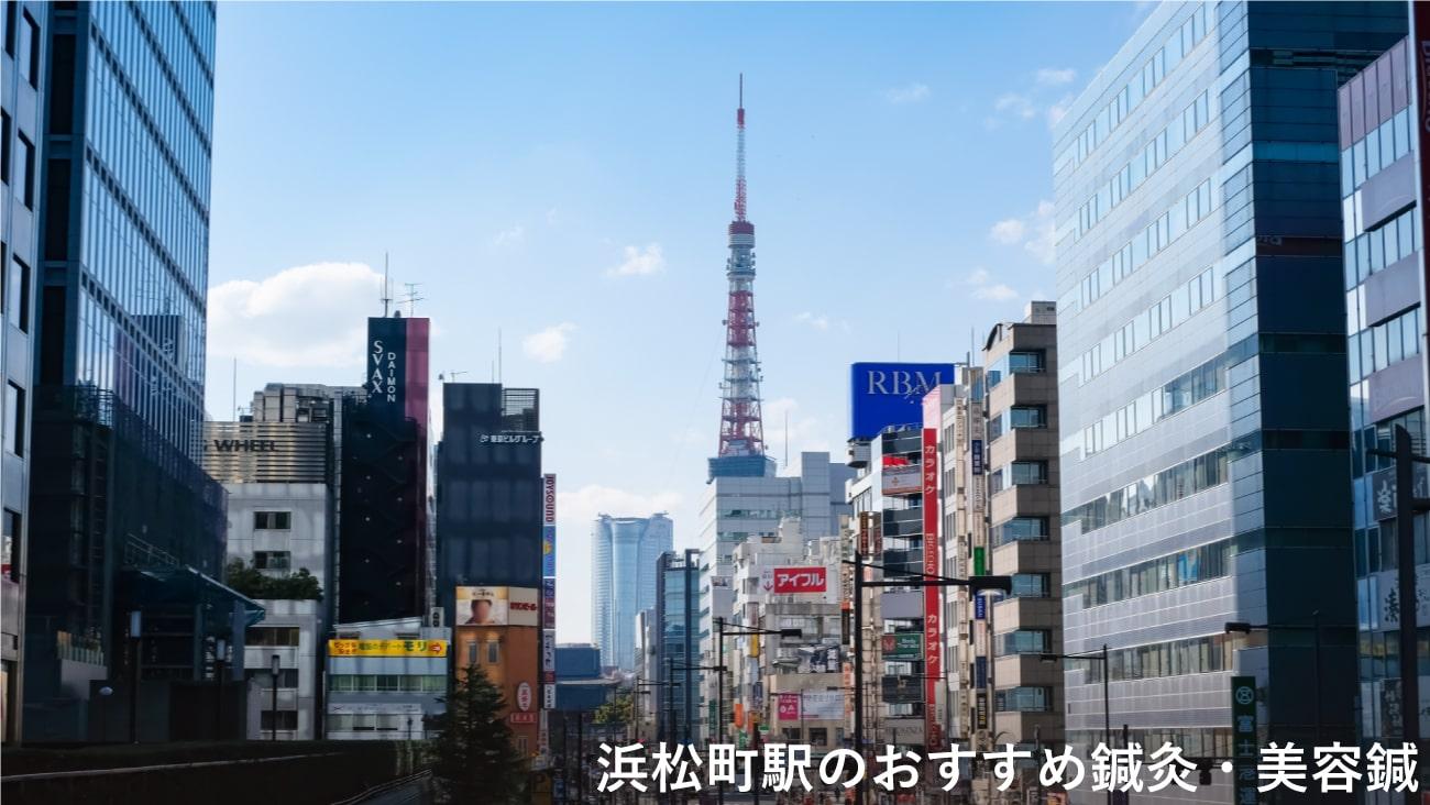 浜松町駅周辺でおすすめ鍼灸・美容鍼3選!口コミで評判が良い!のMV画像