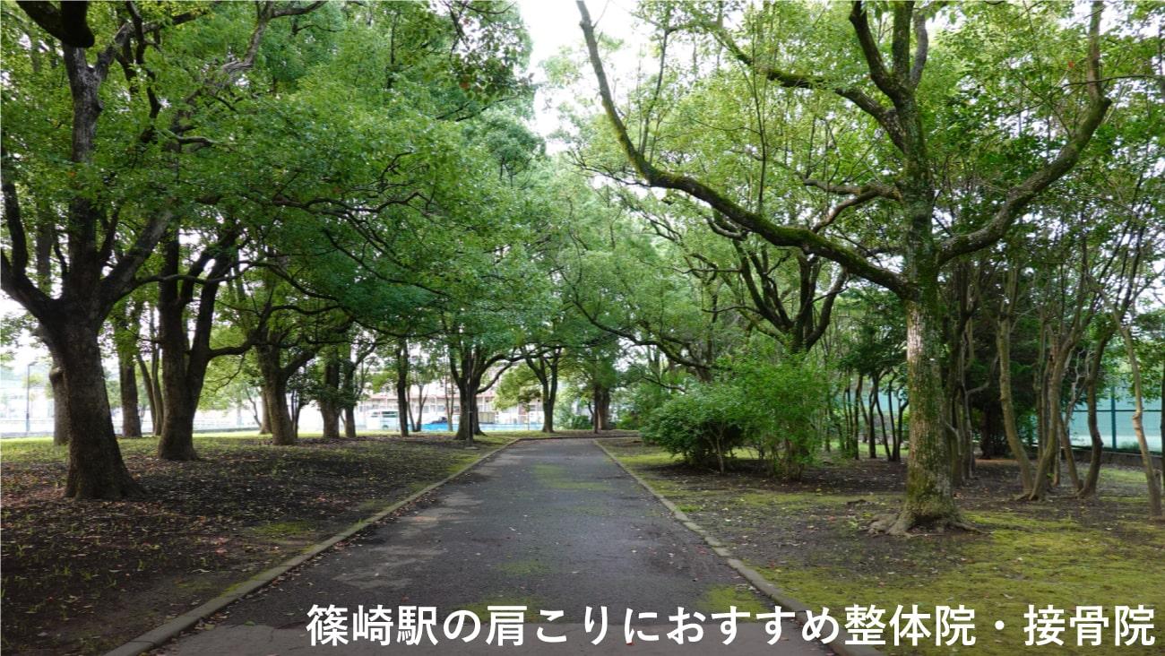 【篠崎駅】周辺で肩こりにおすすめの整体院・接骨院2選!のMV画像