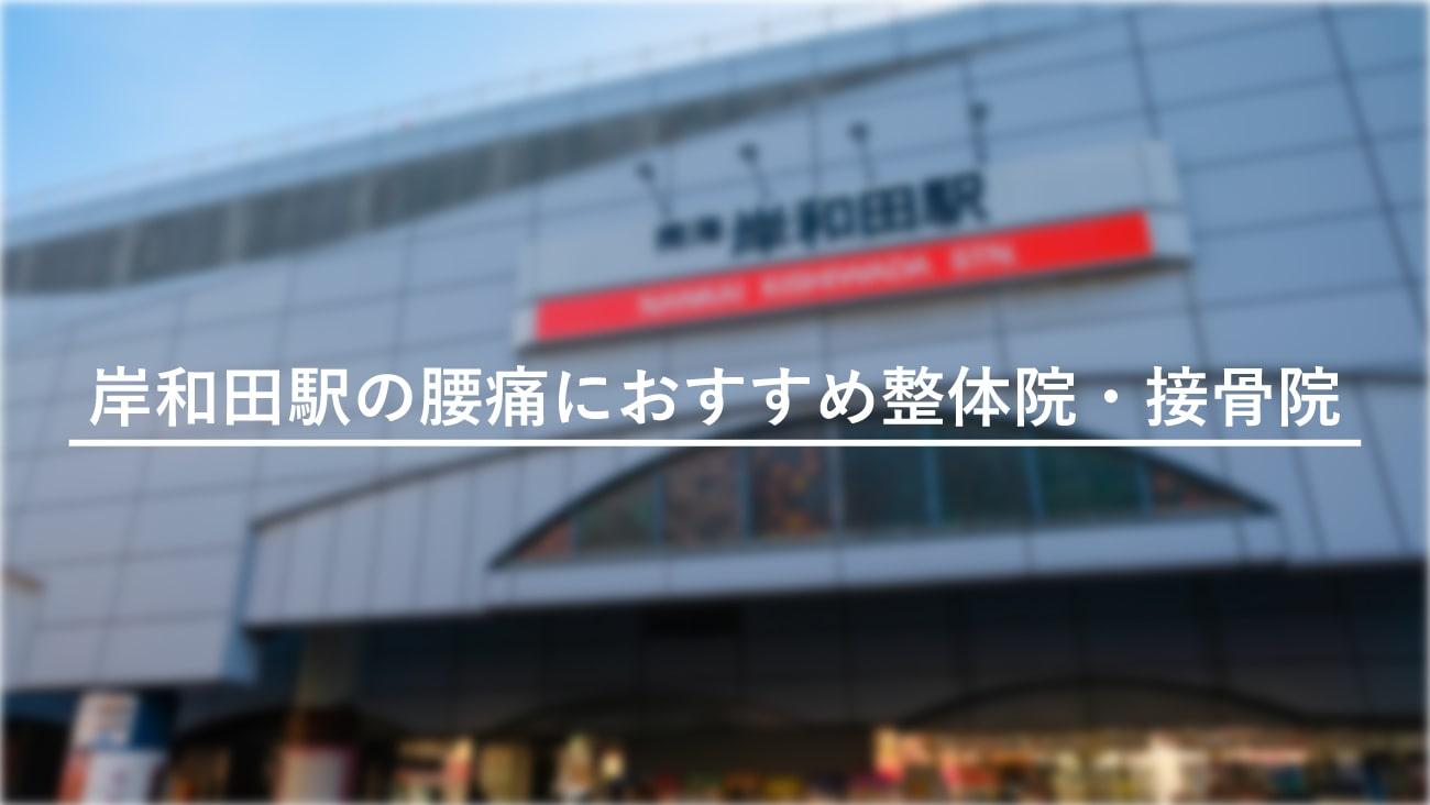 【岸和田駅】周辺で腰痛におすすめの整体院・接骨院2選!のMV画像