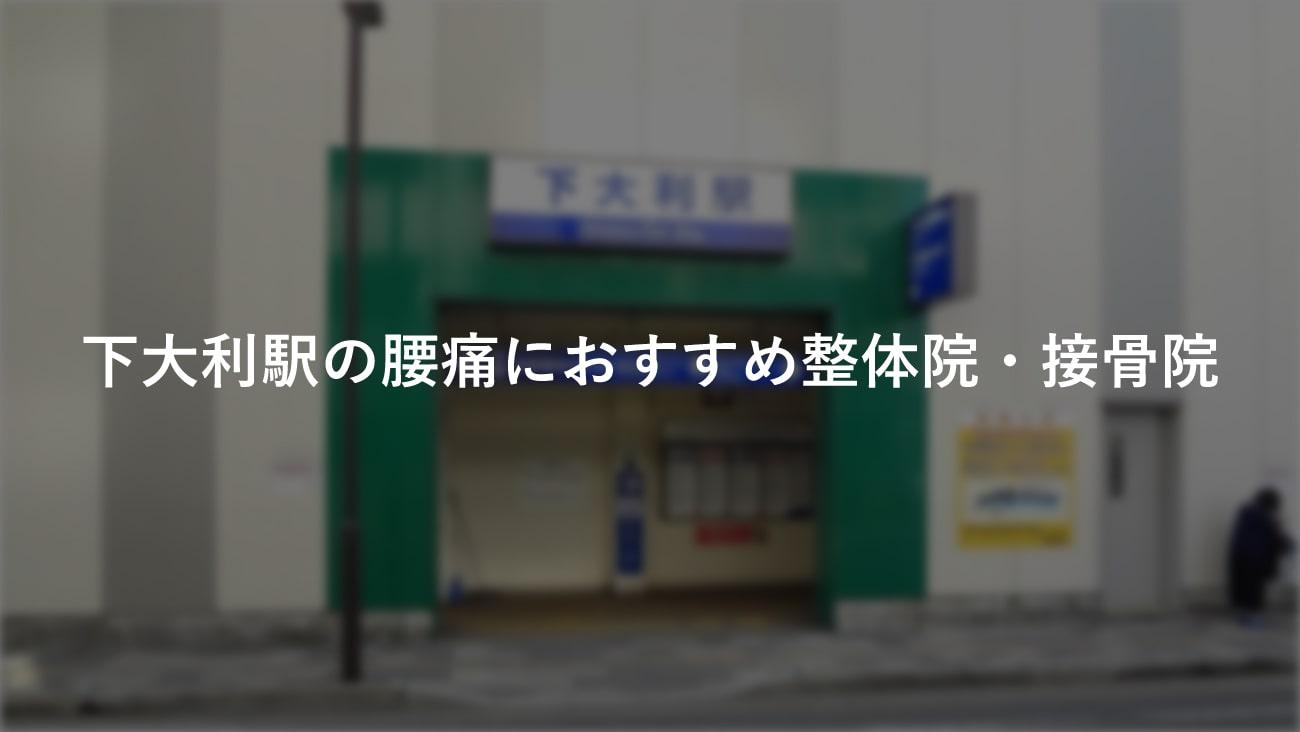 【下大利駅】周辺で【腰痛】におすすめの整体院・接骨院2選!のMV画像