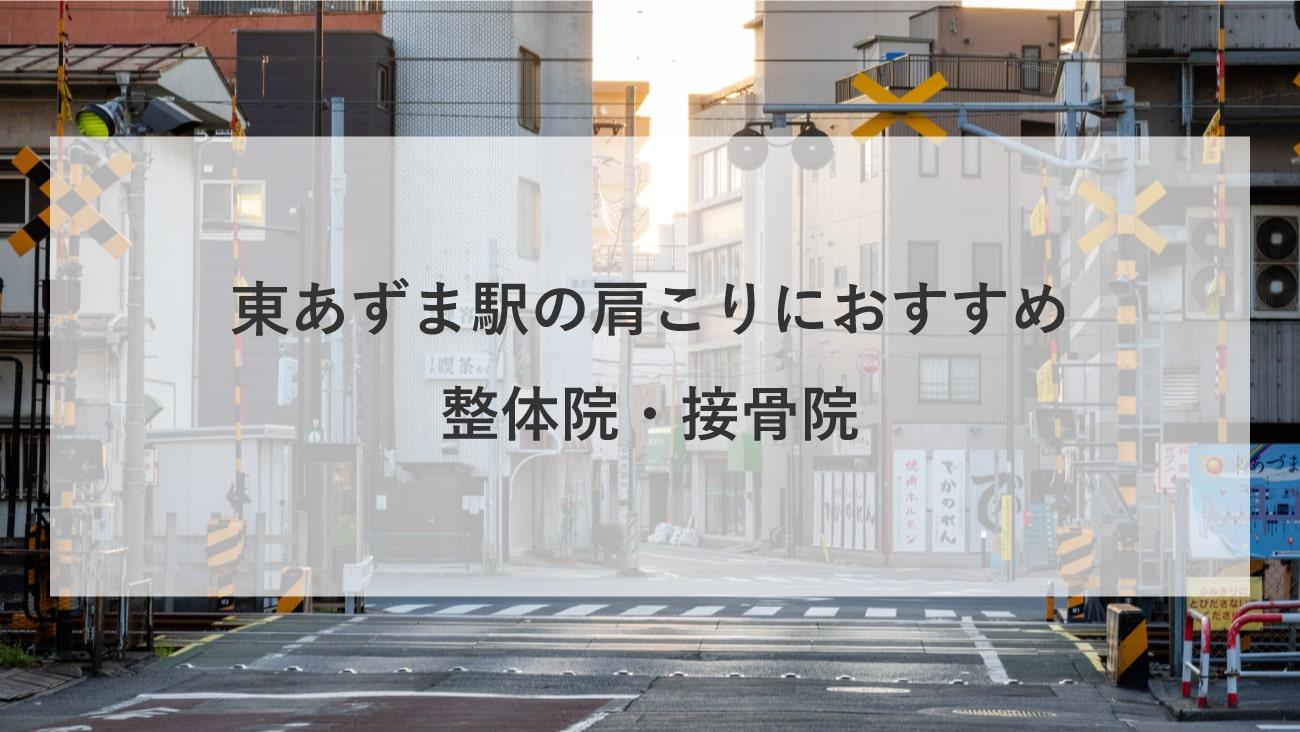 【東あずま駅】周辺で肩こりにおすすめの整体院・接骨院2選!のMV画像