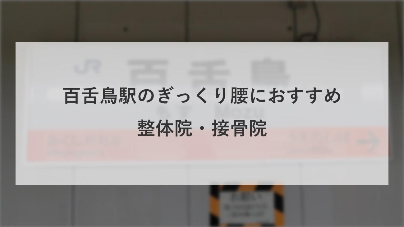 【百舌鳥駅】周辺でぎっくり腰におすすめの整体院・接骨院2選!のMV画像