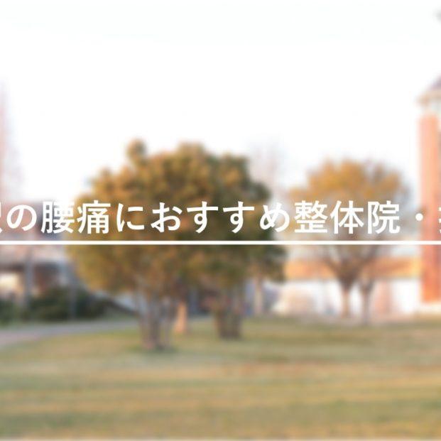 【戸田駅(愛知県)】周辺で腰痛におすすめの整体院・接骨院2選!のMV画像