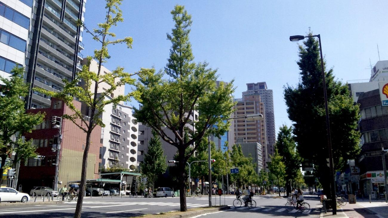 さらに美しく!大阪市西区で痛くないと人気の美容鍼5選!のMV画像