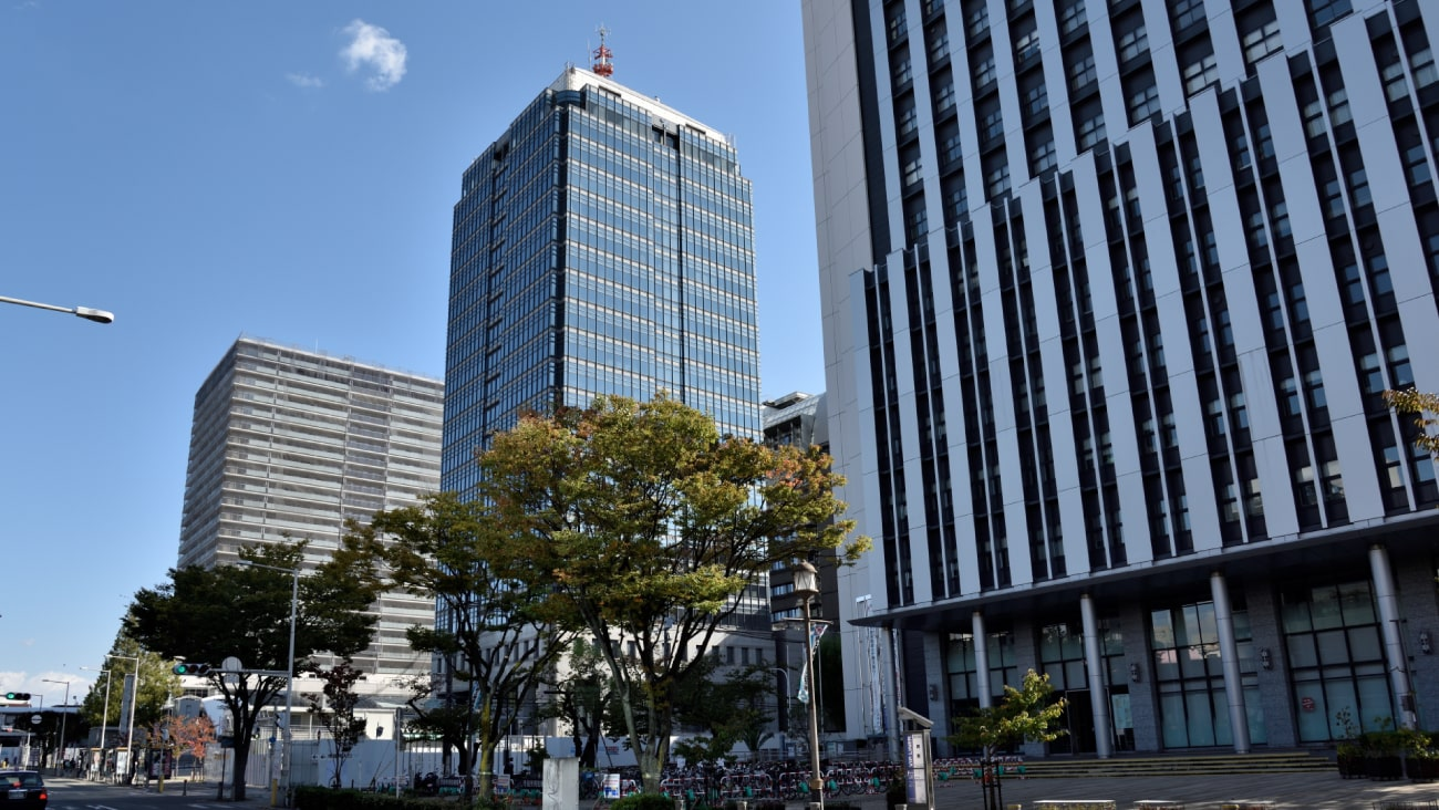 おすすめしたい堺市堺区周辺の美容鍼4選!口コミでも人気の施設!のMV画像