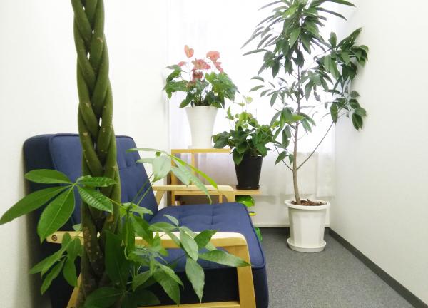 陽だまり鍼灸院の待合室画像